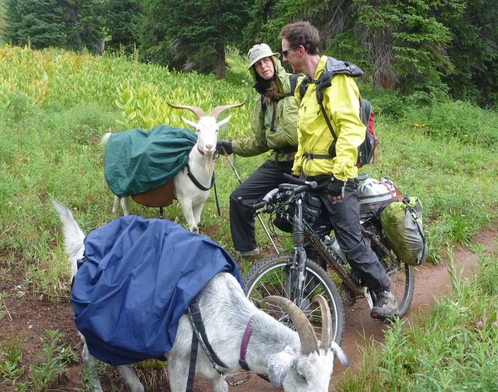 Bike Pacific Crest Trail Share this